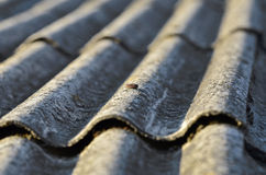 Old roof. Old unhealthy fiber asbestos home roof Stock Photo