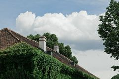 Old roof, walls overgrown with ivy. royalty free stock photography