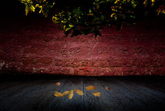 Old room fall,vintage background Royalty Free Stock Images