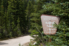 Old Roosevelt National Forest Sign Royalty Free Stock Photography