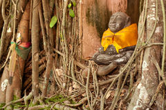 Old root tree around monk statue in Thai church. Stone monk statue surrounded by tree roots in Samutsongkhram Province, Middle of Thailand stock photo