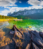 Old roots in the pure water of  Vorderer Gosausee lake. In the Austrian Alps. Austria, Europe. Wide angl Stock Photo