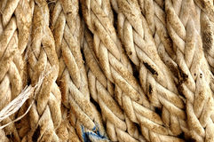 Old rope background Royalty Free Stock Image