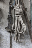 Old rope hanging on the wall Stock Image
