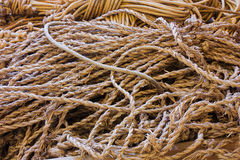 Old ropes Stock Photography