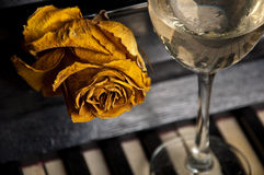 Old rose behind wine glass on piano Royalty Free Stock Images