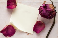 Old rose and blank sticky note paper Royalty Free Stock Image
