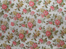 Old rose decorated wallpaper Stock Image