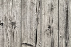 Old Weathered Cracked Knotted Pinewood Floorboards Rough Grunge Surface - Detail Royalty Free Stock Images