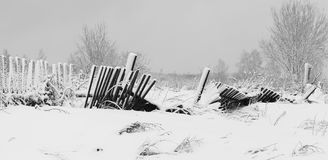 The old rotten fence in a winter white snowy field Stock Photos