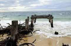 Old rotten pier piles Stock Photography