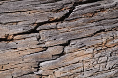 Old rotten wooden board cracked Stock Photo