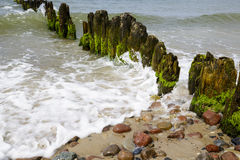 Old and rotten wooden breakwaters Stock Photos