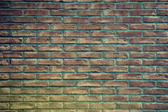 Old rough brick wall Stock Image