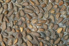 Pebble or gravel stone texture floor background. Old rough random pebble or gravel stone texture floor background.have some space for write wording stock image