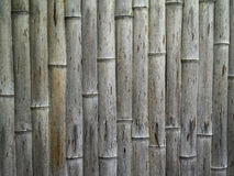 Old rough texture japanese bamboo. In vertical stripe pattern Stock Images