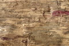 Old dry drift wood weathered and grunge. Old rough and weathered wooden surface close up, dirty, textured and detailed Royalty Free Stock Photos