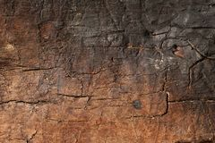 Old dry wood burned with cracks. Old rough and weathered wooden surface close up, dirty, textured and detailed Stock Photo