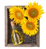 Old rough wooden box with sunflowers, oil bottle Stock Photo