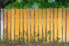Wooden fence. Old rough wooden yellow fence in the village stock photography