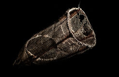 Old round fishing net isolated on black Stock Images