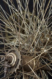 Old round spokes 4 Stock Image