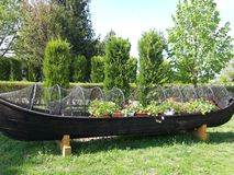Arrangement of flowers on wooden boat. An old row boat has been turned into a flower garden on Saon Monastery, Tulcea, Romania stock photography
