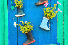 Old rubber boots with blooming flowers stock photos