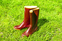 Old rubber boots standing on the grass Stock Photos