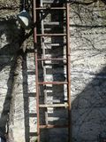 Ladders. Old rude reddis red ladders on the wall royalty free stock photo