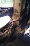 Old Ruin Stock Photos