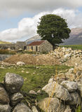 Old ruin in the mournes Royalty Free Stock Images