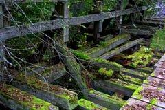 Old ruined bridge. Old ruined mossy bridge in Russia Stock Image