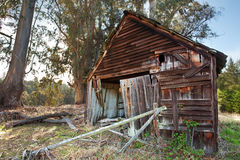 Old Ruined Cabin Stock Photography