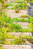 Old ruined concrete stairs at the beach, Halkidiki, Greece Stock Photography