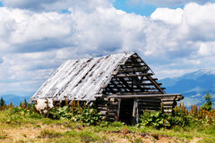 Old ruined wooden barn in the mountains and cow Royalty Free Stock Photography