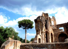 Old ruins Royalty Free Stock Photo