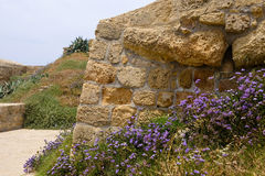 Old ruins of Acre, Israel Stock Photos