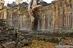 Old ruins Angkor Wat Stock Photos