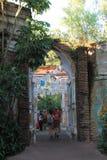 Old ruins at Animal Kingdom stock image