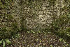 Old Ruins Royalty Free Stock Photos