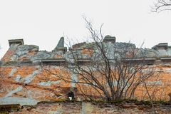 An old broken brick wall in an old castle. broken vaults. The old ruins of the collapsed walls with gates and windows Staroselskiy castle royalty free stock image