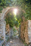 Old ruins covered in plants Stock Image
