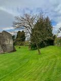 Old ruins in Farnham royalty free stock photography
