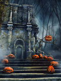 Old ruins with pumpkins Stock Photo