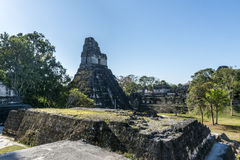 Old ruins of The temple at Tikal, Guatemala Stock Photography