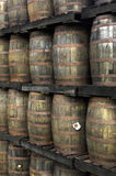 Old rum in a distillery Royalty Free Stock Images