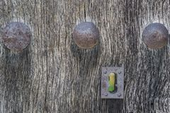 Old run-down wooden door and lock Stock Photography