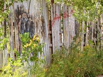 Old run down wooden fence with covered up painted Graffiti Royalty Free Stock Image