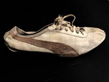 Old Running Shoes With Spikes. Running shoes with spikes in a studio setup. These running shoes were shoes in the late 1960s for track&field races Royalty Free Stock Photos